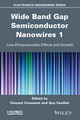 Wide Band Gap Semiconductor Nanowires for Optical Devices: Low-Dimensionality Related Effects and Growth (1848215975) cover image
