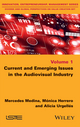 Current and Emerging Issues in the Audiovisual Industry (1848219776) cover image