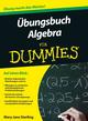 Übungsbuch Algebra für Dummies (3527668276) cover image