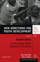 Summertime: Confronting Risks, Exploring Solutions: New Directions for Youth Development, Number 114 (0470182377) cover image