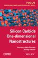 Silicon Carbide One-dimensional Nanostructures (1848217978) cover image