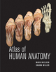 Atlas of Human Anatomy (EHEP001778) cover image
