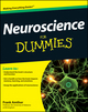 Neuroscience For Dummies (1118089685) cover image