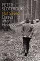 Not Saved: Essays After Heidegger (0745696988) cover image