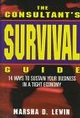 The Consultants' Survival Guide (0471160792) cover image