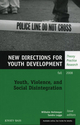 Youth, Violence, and Social Disintegration: New Directions for Youth Development, Number 119 (0470424095) cover image