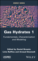Gas Hydrates: From Characterization and Modeling to Applications (1848219695) cover image