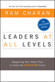 Leaders at All Levels: Deepening Your Talent Pool to Solve the Succession Crisis (0787985597) cover image