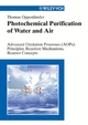 Photochemical Purification of Water and Air: Advanced Oxidation Processes (AOPs) - Principles, Reaction Mechanisms, Reactor Concepts (3527610898) cover image