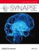 Synapse (SYN2) cover image